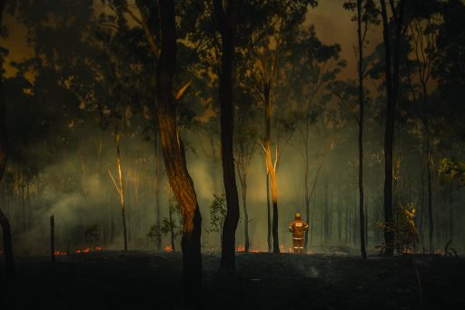 Image of the devastation left by the bushfires in Australia